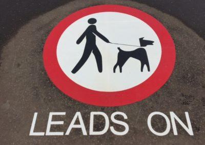hiflex-preformed-keep-dogs-on-leads-symbol