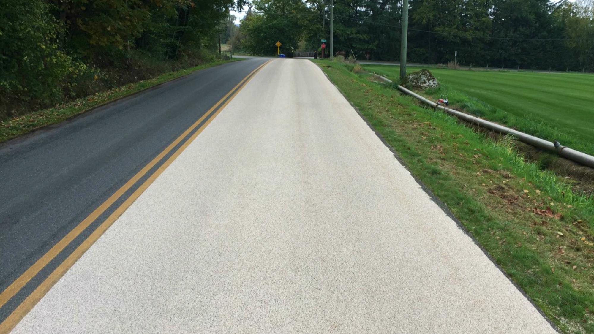PumaGrip Road